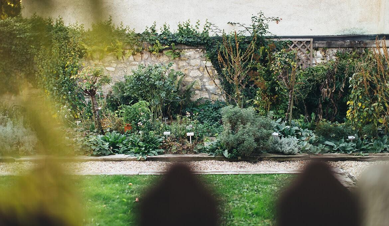 Der Haydn-Kräutergarten in Eisenstadt, Foto: © Nicole Heiling