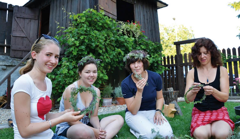 Sommer im Haydn-Kräutergarten, © KBB
